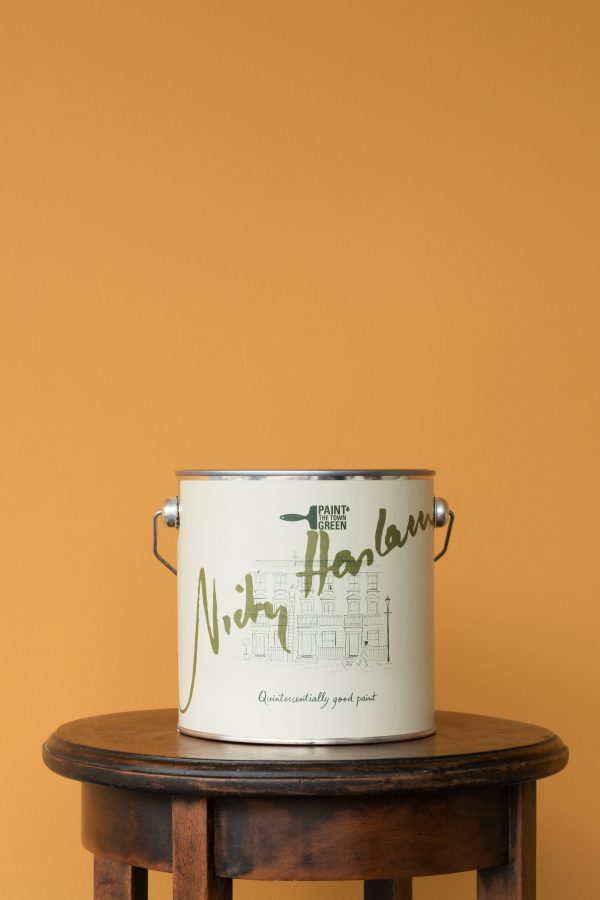 Nicky Haslam Eco Paint in Tiger's Eye by British brand Paint the Town Green and available at The Decorcafe, lifestyle immage showing pot of pain against painted wall