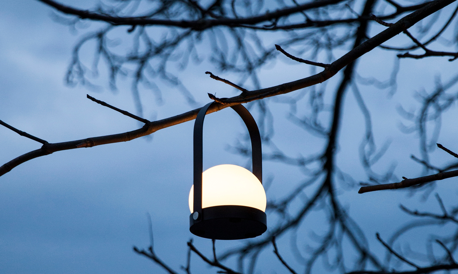 Portable light hanging from tree