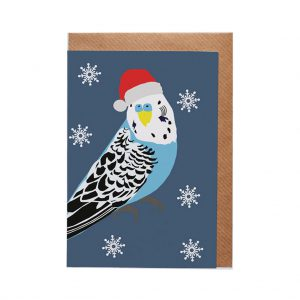 Ben the Budgie Christmas Card by Lorna Syson at The Decorcafe