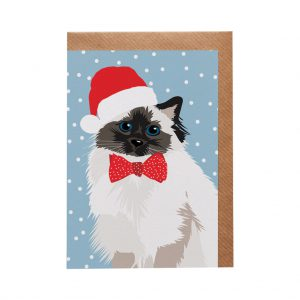 Meg the Persian Cat Christmas Card by Lorna Syson at The Decorcafe - Cutout Image