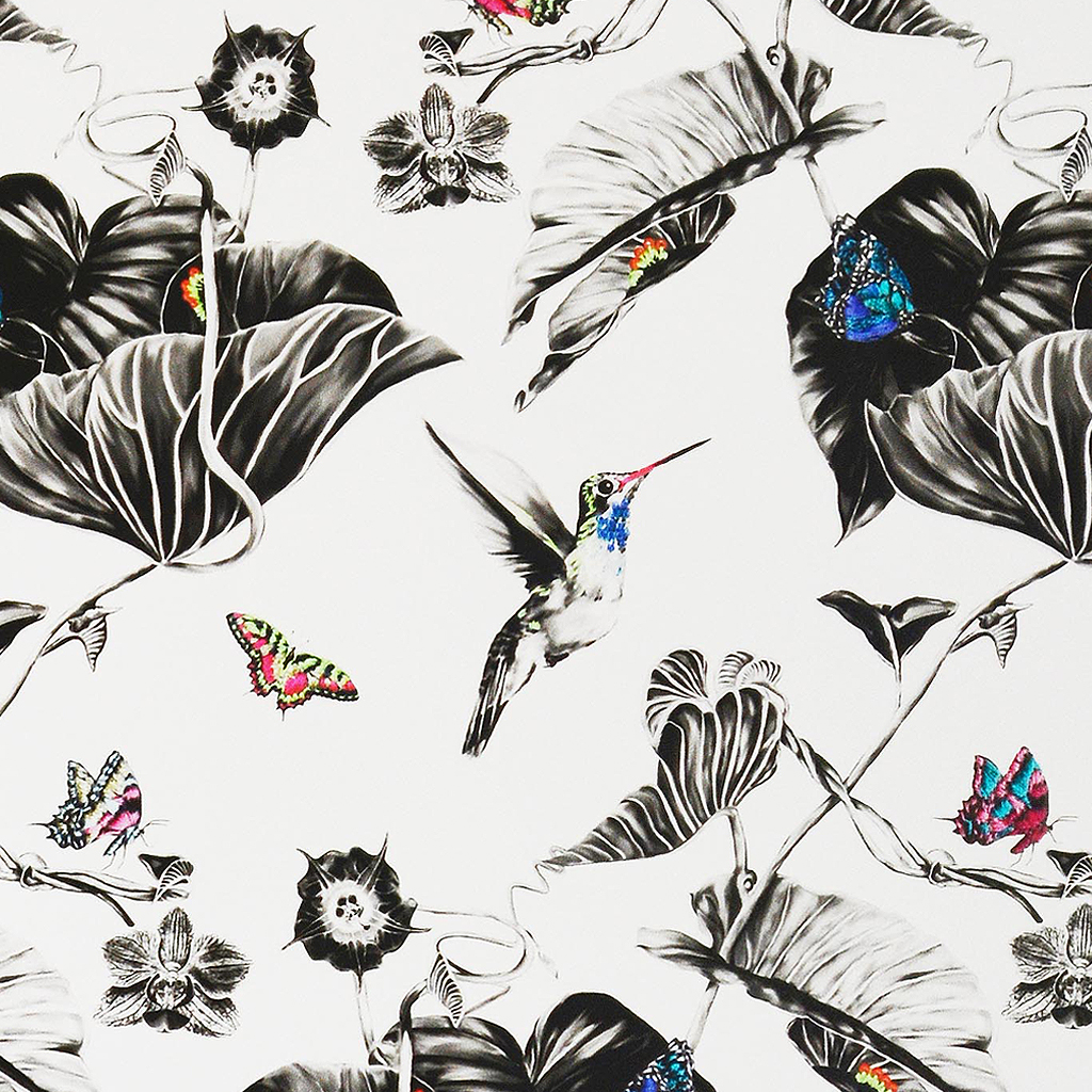 Multi Hummingbirds Wallpaper Wallpaper by Susannah Weiland Collections at The Decorcafe