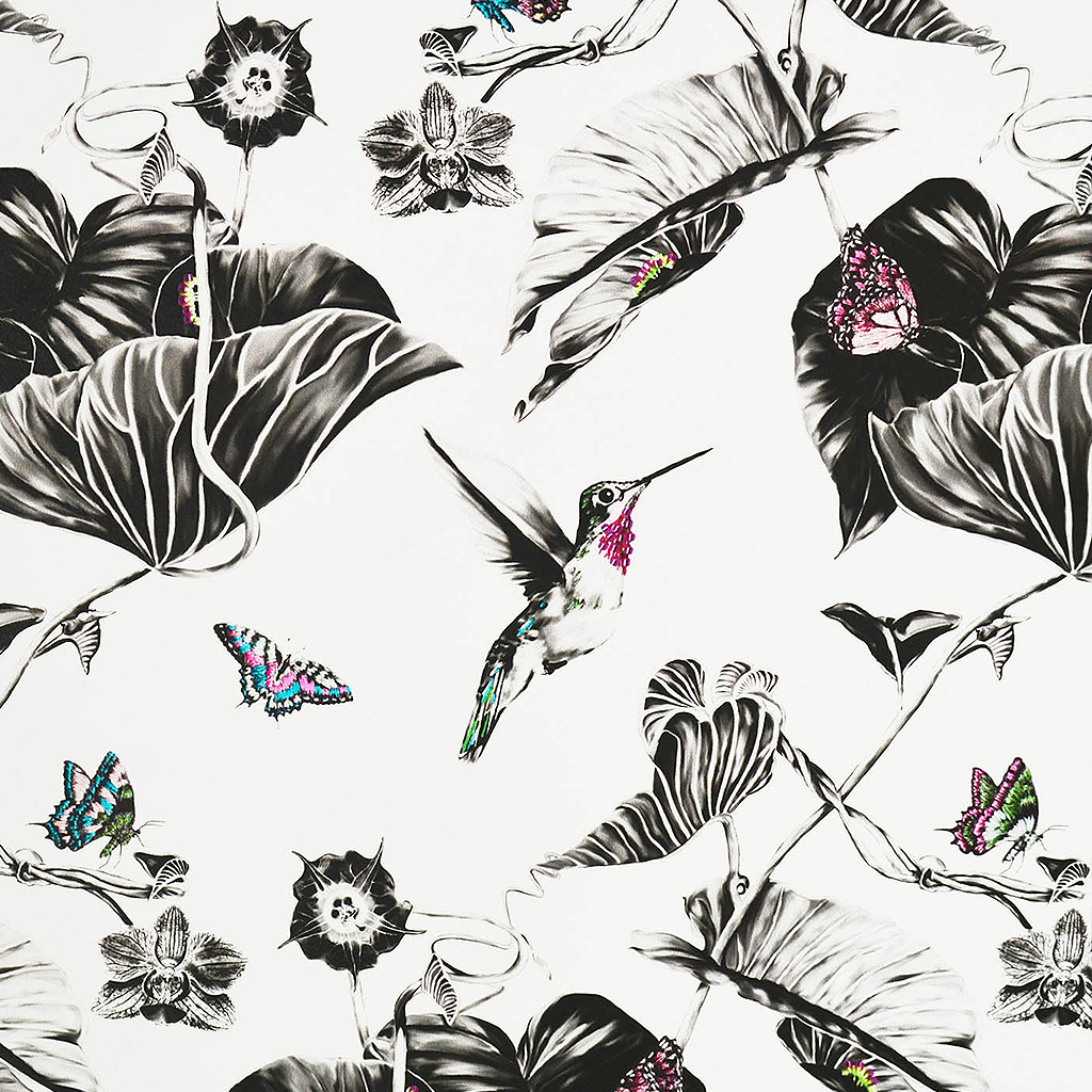 Pink Hummingbirds Wallpaper Wallpaper by Susannah Weiland Collections at The Decorcafe